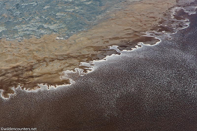 Aerial view of evaporated sodium compounds on lake shore and lake surface, Lake Natron, Tanzania, Canon 5D MK5, Canon-24-105mm f4 IS lens @105mm, 1/2,000 sec, f4, ISO 400,  AV at 0