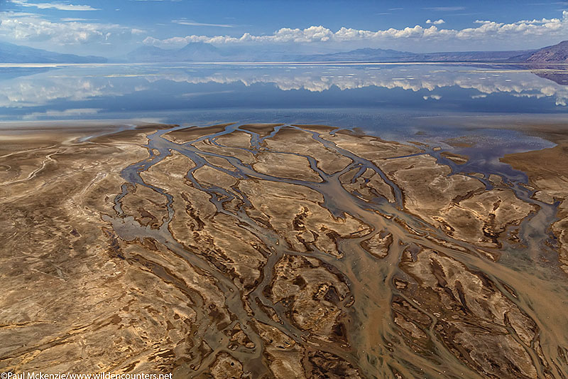 Aerial image of river delta on the edge of Lake Natron, Tanzania_74A0311 {J}