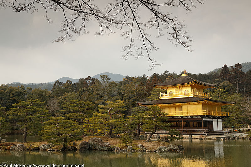 44. Kinkaku-ji temple, Kyoto, Japan