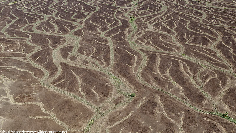 6. Rain erosion patterns, Seguta Valley, Kenya